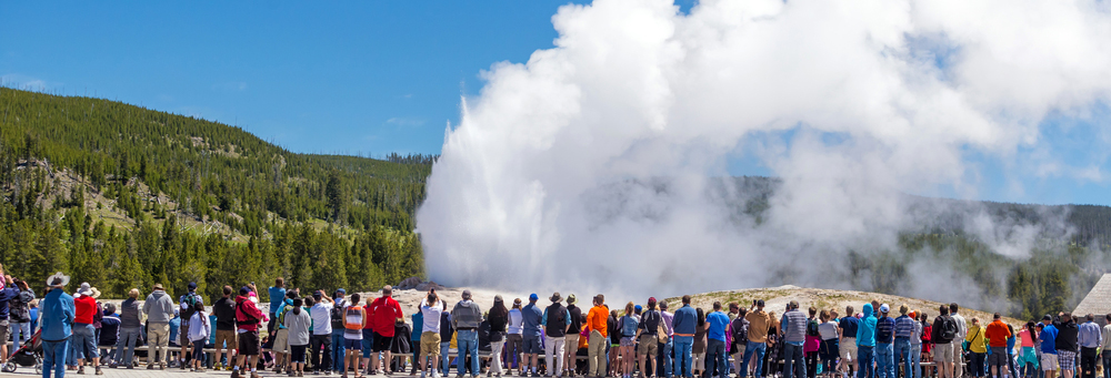 Just Call Us Old Faithful